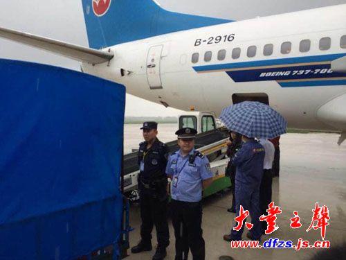 大熊猫抵达盐城机场 运往大丰港动物园